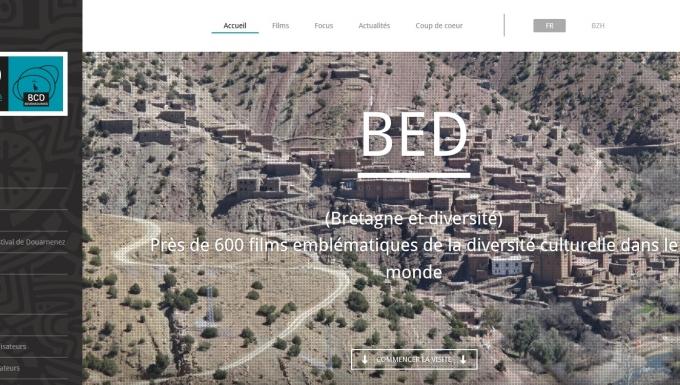 Page d'accueil du site Bretagne et diversité
