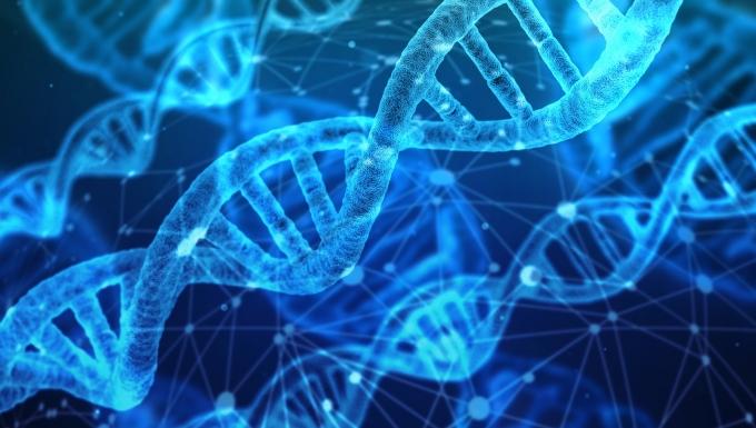 Illustration d'une séquence d'ADN.