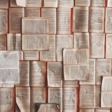 Des livres ouverts.