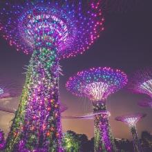série de tours très futuristes et illuminées en couleurs fluos